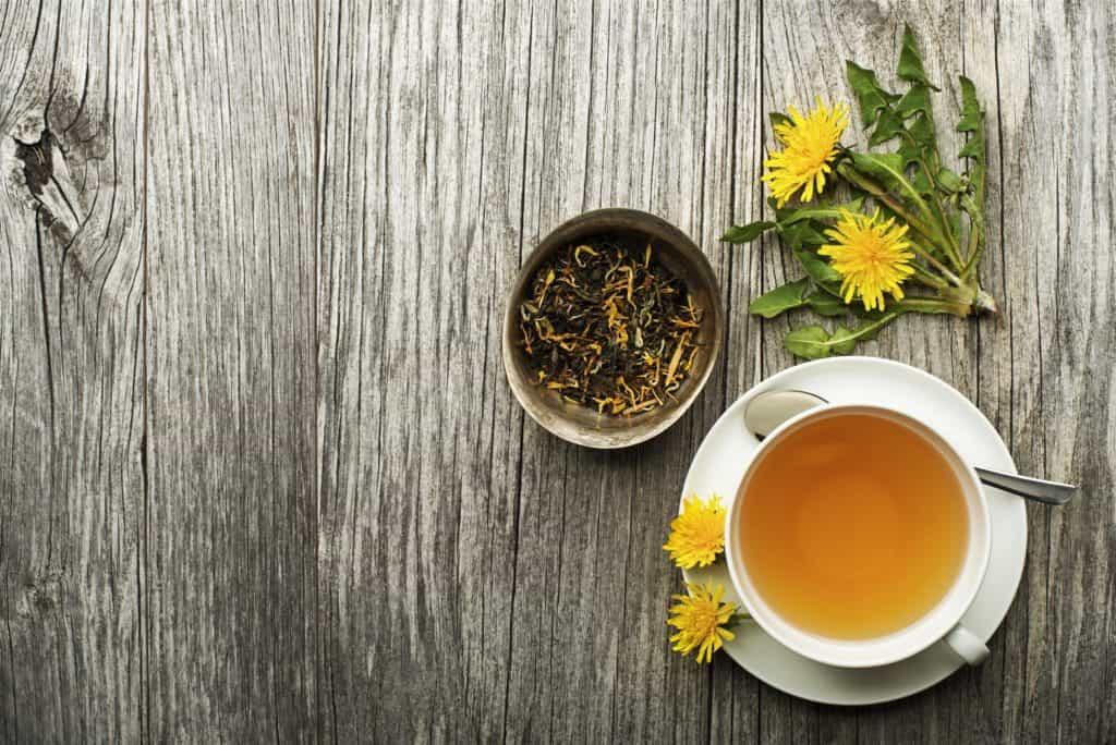 Uống trà bồ công anh có tác dụng gì đối với sức khỏe?
