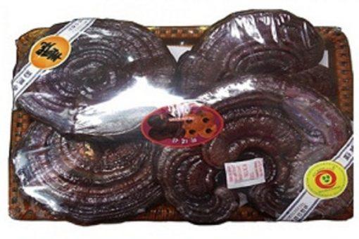 Nấm linh chi Hàn Quốc Ginseng Korea tai to loại 1 chính hãng