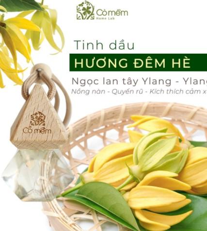 Tinh Dầu Treo Hương Đêm Hè Cỏ Mềm 8,5ml